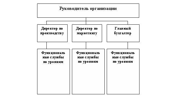 struktura_predpriyatiya
